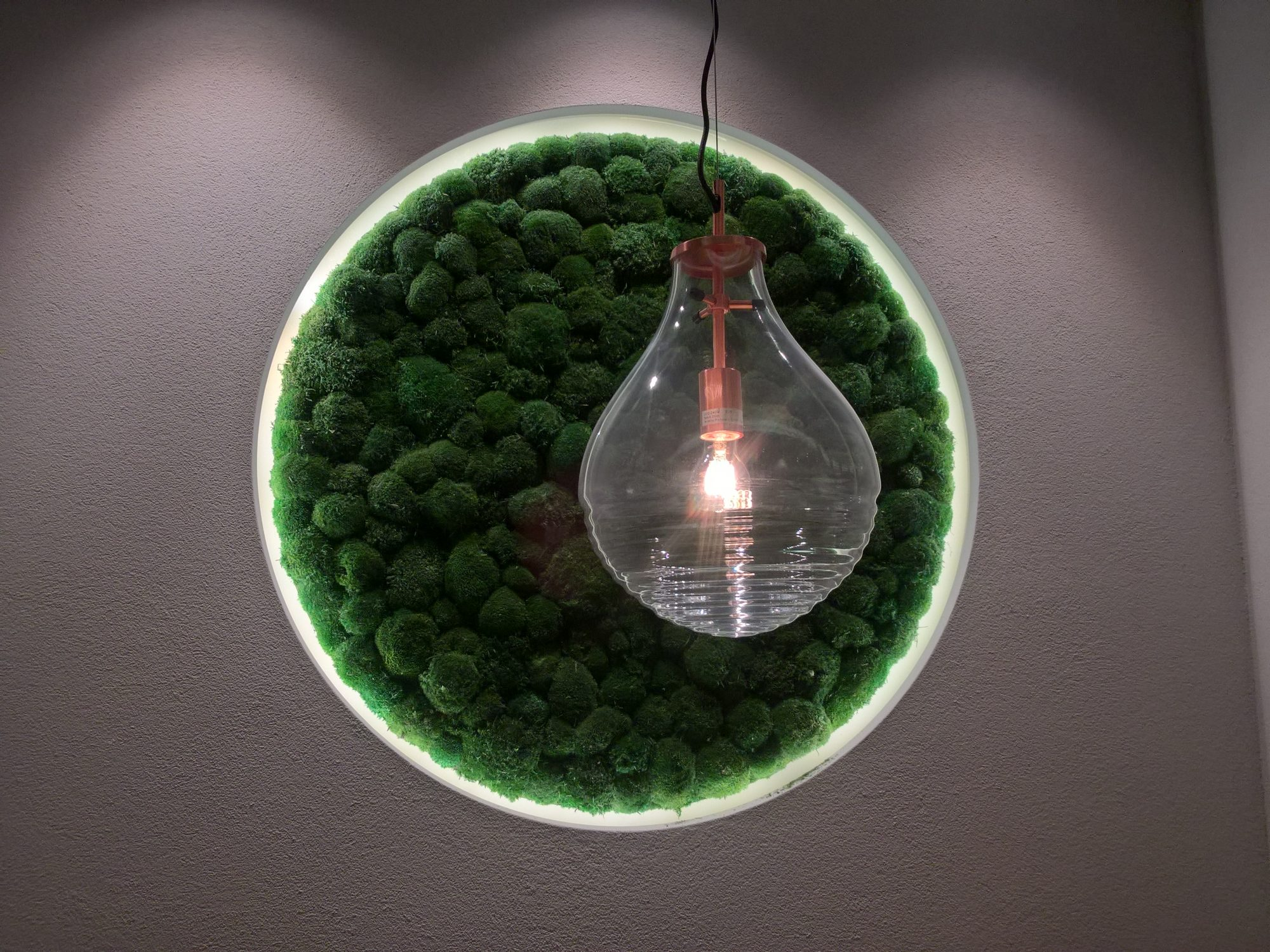 photo of Relaxing image of a lightbulb in front of a moss circle
